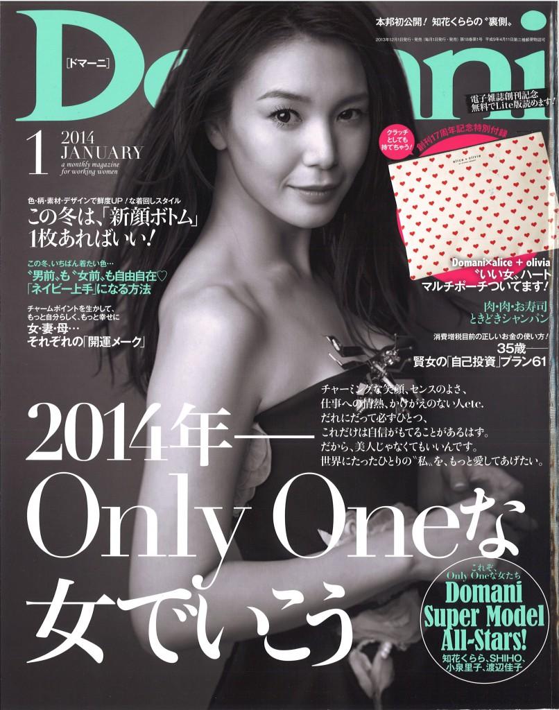 Domani 1 issue cover
