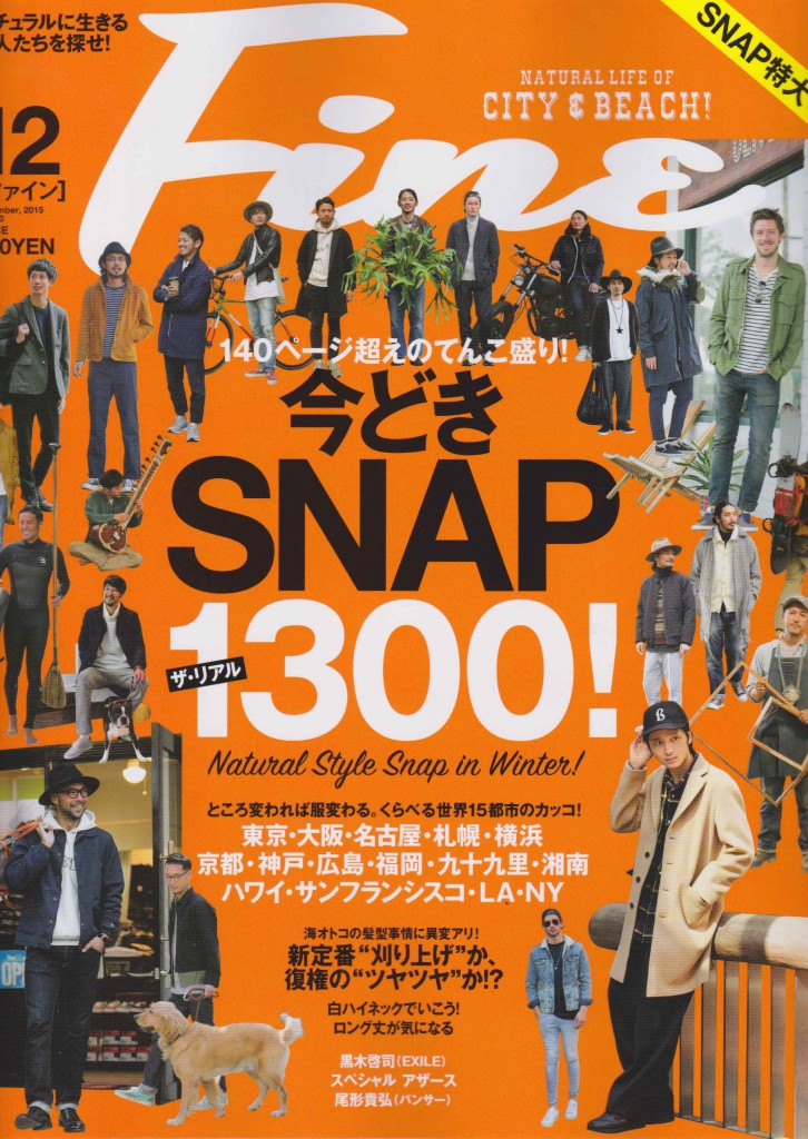 Fine 12 issue cover